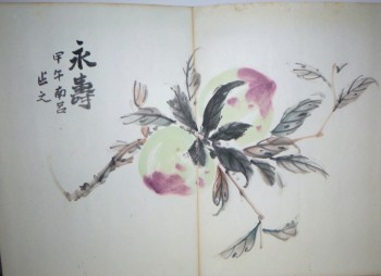 Image for Original Japanese Artist's Book