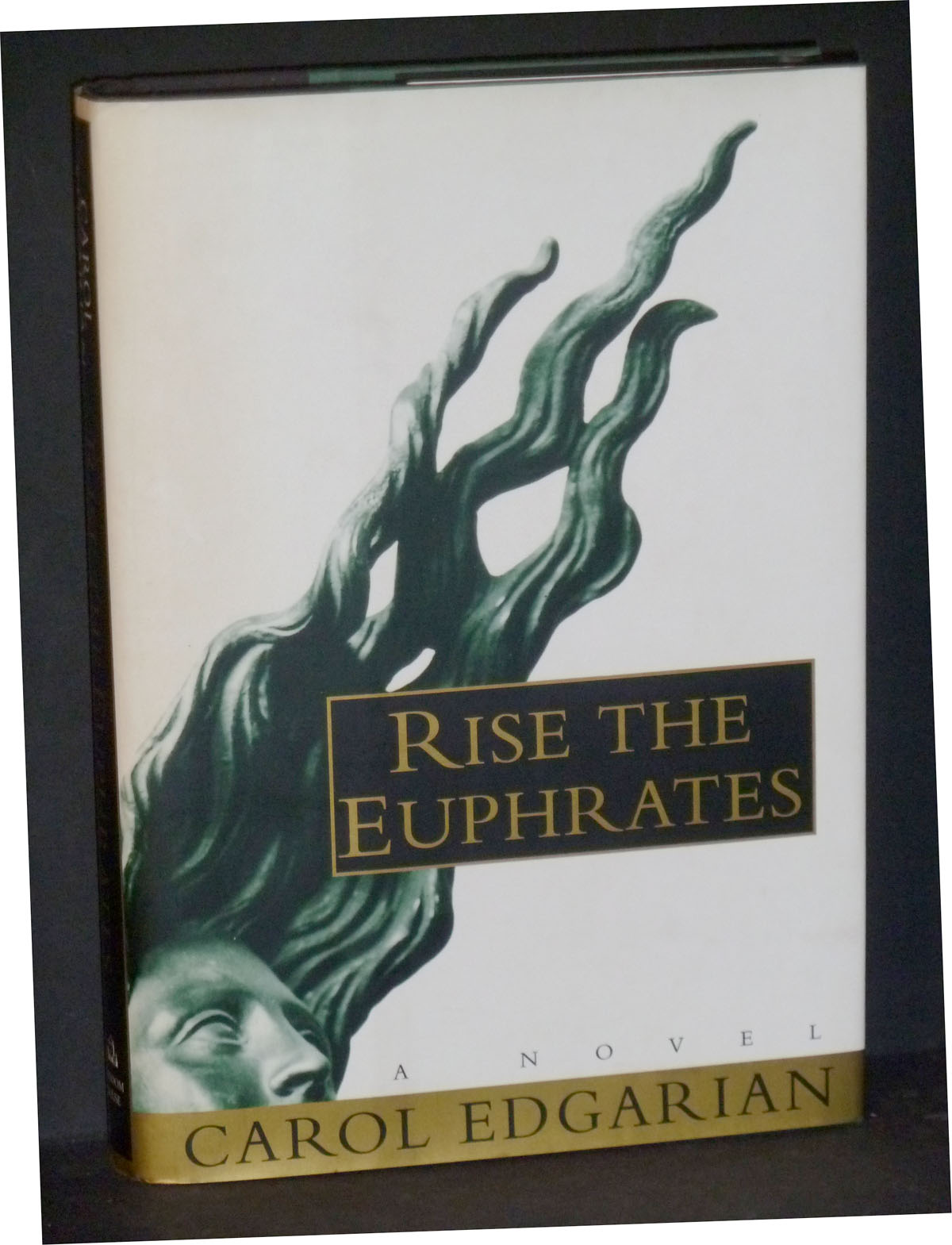 Image for Rise The Euphrates