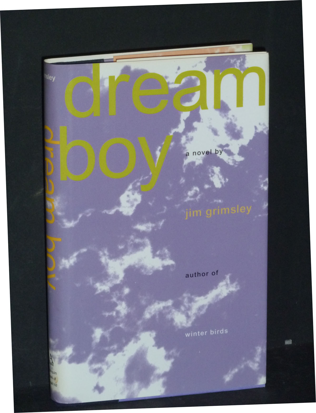 Image for Dream Boy: A Novel